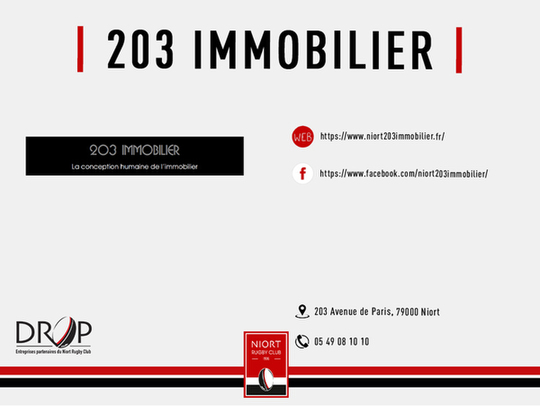 203 Immobilier